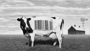 Image - Food Inc.