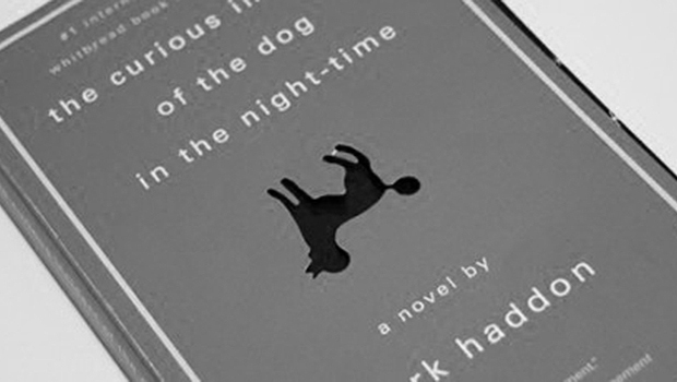 Image - The Curious Incident of the dog in the nighttime - good books for Teens and Young Adults.