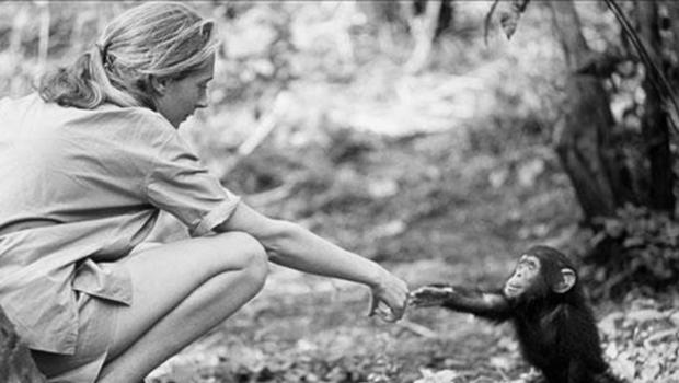Biographies for kids - Jane Goodall